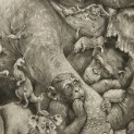 sleeping-chimp-elephant-adonna-khare-mural