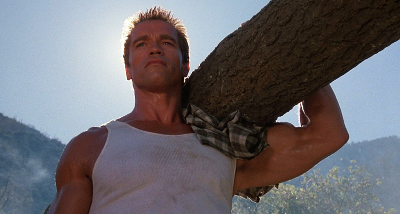 Arnold Carrying a Log