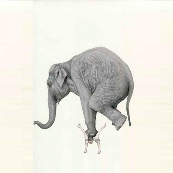 Fabien Merelle Elephant Art Sketch