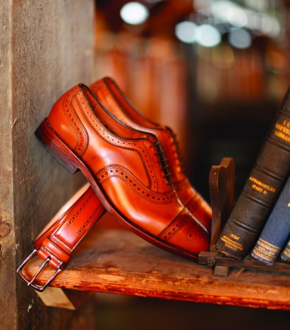 Sophisticated Brown Shoes on Bookshelf