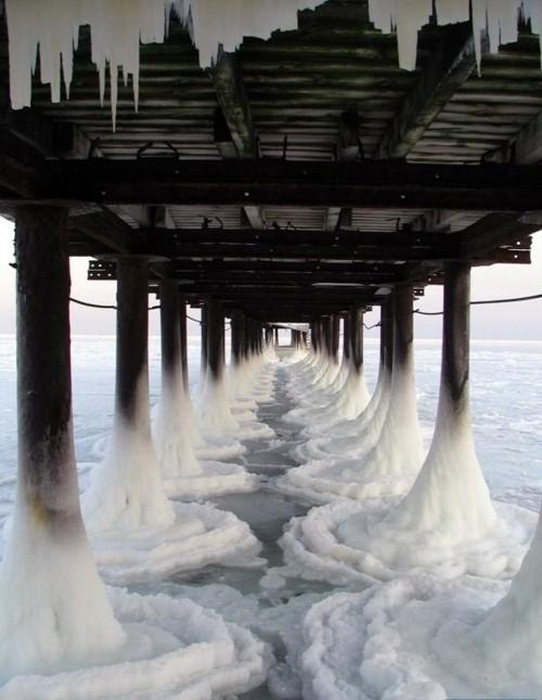 Dapper Report vol.8 24 icey