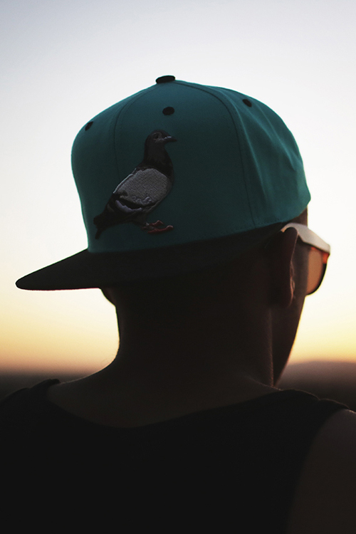 Staple Pigeon Snapback Hat