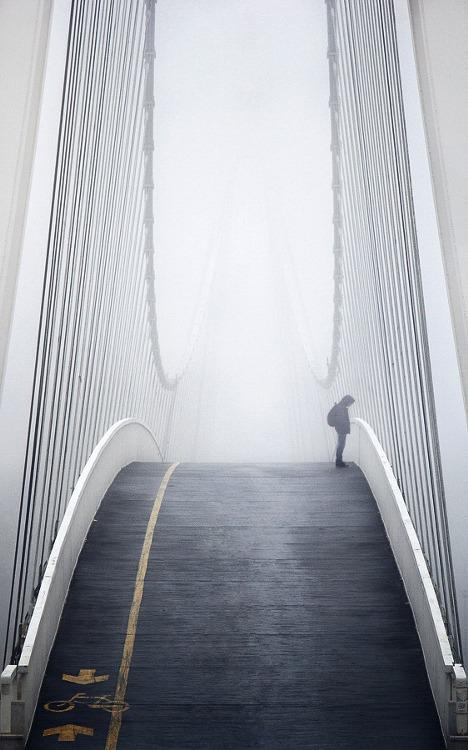 dapper-report-vol-11-25-wavy-bridge