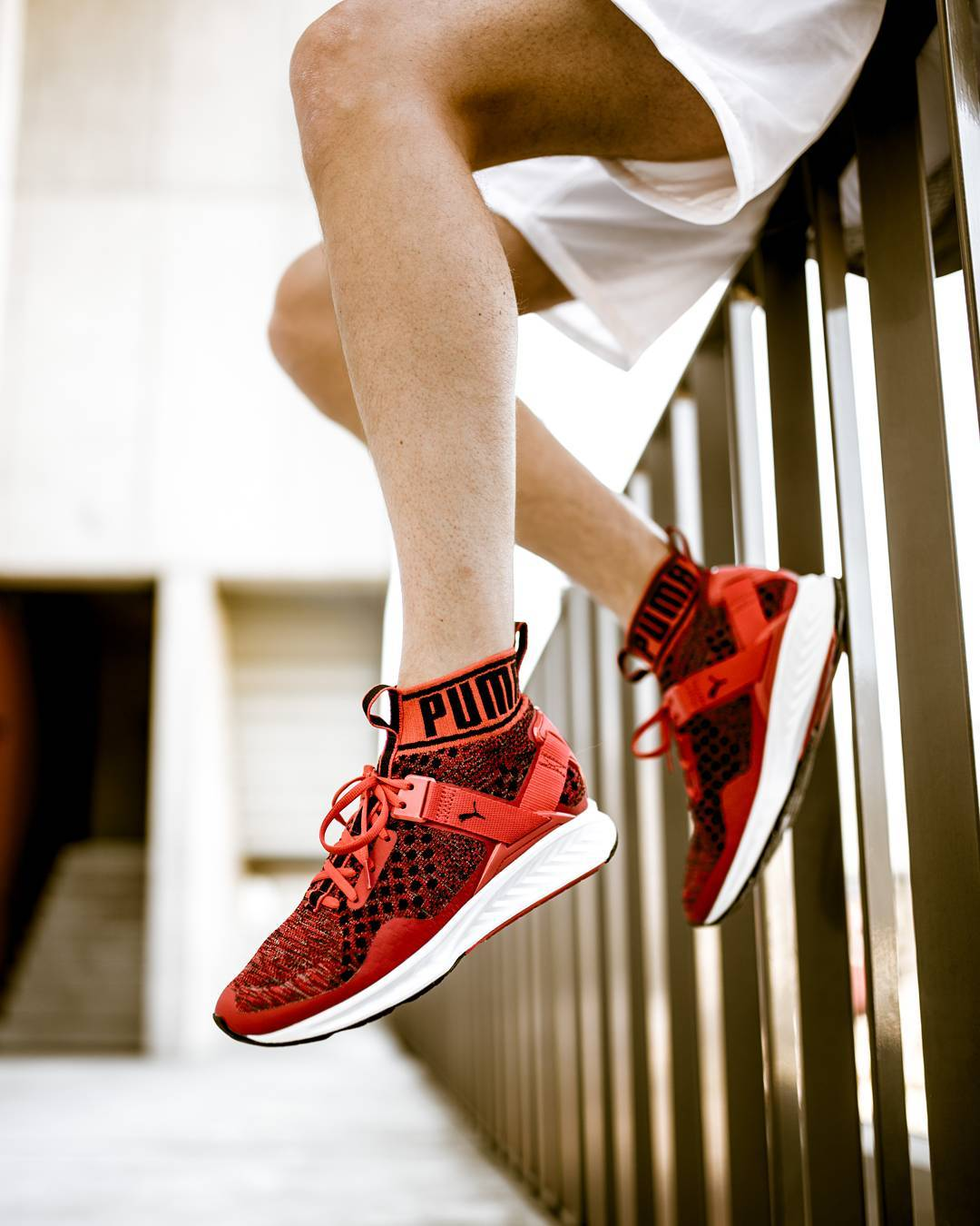 Puma Ignite 3 EvoKnit 'Red & Black'