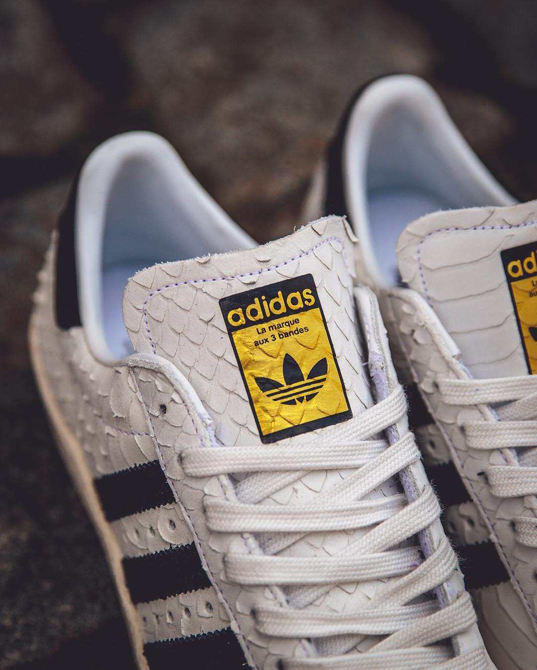Snakeskin Superstar 80s w/gold tinfoil at the tongue